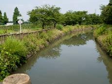 見沼代用水東縁 総持院橋より