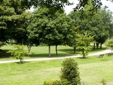 見沼自然公園