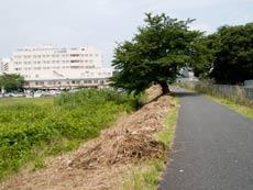 七里総合公園付近